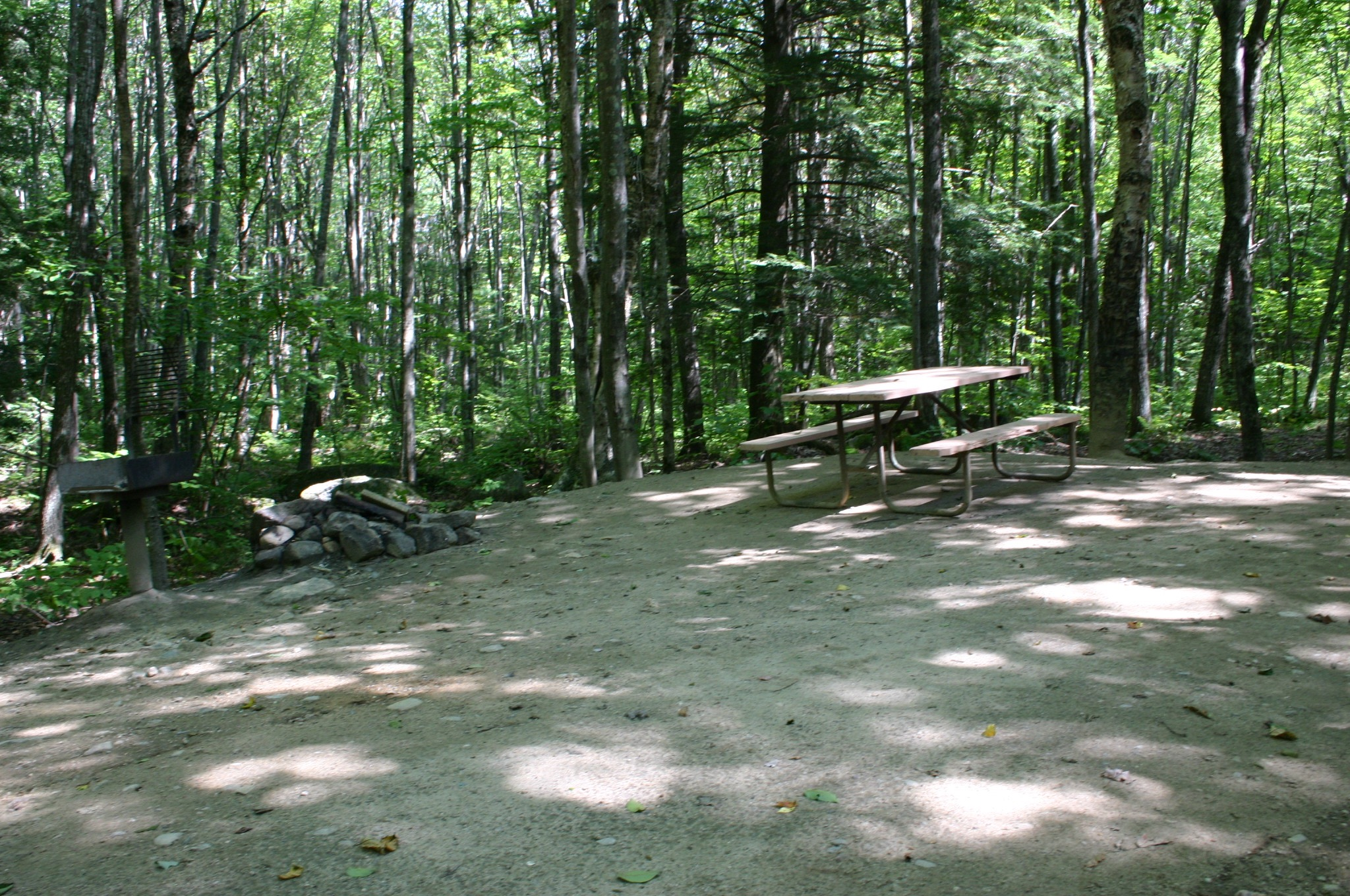 Sebago Lake Campground Site